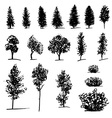Set of hand drawn sketch trees on white background vector image vector image