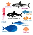 Cartoon marine animals in flat style vector image