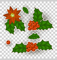christmas holly berry set isolated from the vector image