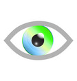 color eye vector image vector image