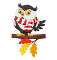 cute autumn owl cartoon wearing a scarf vector image vector image