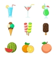Fruits Ice cream Drinks vector image