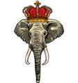 head elephant king animal artwork vector image