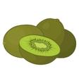 kiwi fruit vector image vector image