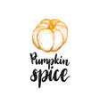Pumpkin spice lettering on white background hand