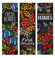 wild berry or fresh fruit blackboard banner design vector image vector image