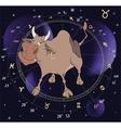 Zodiac signs Taurus vector image