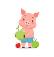 cute pig with apples funny cartoon animal vector image
