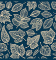 floral pattern decorative leaves concept vector image