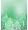green vector image vector image