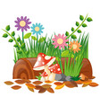 mushroom and flowers in garden vector image vector image