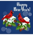 Red cardinal birds on pine tree vector image vector image