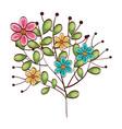 beautiful flowers design vector image vector image