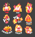 hot spicy fire chicken set creative logo design vector image vector image