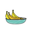 isolated banana design vector image