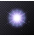Light Color Glow Flare Star Effect vector image vector image