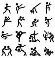 sport pictograph icon set 03 martial arts vector image