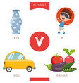 alphabet letter v and pictures vector image vector image