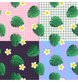 beautiful seamless pattern backgrounds set with vector image