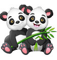 cartoon couple panda with green bamboo vector image vector image