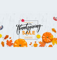thanksgiving autumn sale poster pumpkin leaf fall vector image vector image