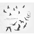 wedge of birds flying in sky vector image vector image