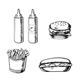 French fries burger hot dog and condiment vector image