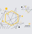 abstract yellow and black geometric hexagon vector image vector image