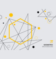 abstract yellow and black geometric hexagon with vector image vector image