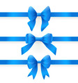 blue bows vector image