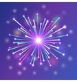 brightly colorful fireworks vector image vector image