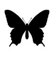 butterfly silhouette isolated on white vector image vector image