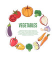 fresh vegetables round concept vector image