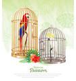 bird market poster background vector image vector image