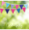 birthday garden party or brazilian june party vector image vector image