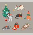 cats celebrating winter holiday vector image vector image