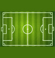 football green field vector image vector image