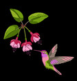 fuchsia and hummingbird embroidery vector image