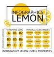 Infographics Lemon vector image vector image