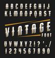 set vintage font vector image