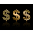 Three dollar signs vector image vector image