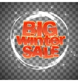 Big winter sale on transparent background vector image vector image