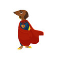cartoon superman costume dog character vector image vector image