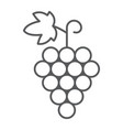grapes thin line icon fruit and vitamin vector image vector image