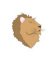 lion portrait vector image vector image