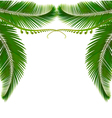 Palm leaves on white background vector | Price: 1 Credit (USD $1)
