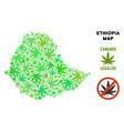 royalty free marijuana leaves mosaic ethiopia map vector image