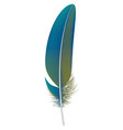trendy feather icon realistic style vector image vector image