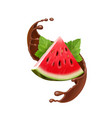 watermelon in chocolate splash realistic vector image