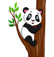 cartoon panda climbing a tree vector image vector image